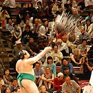 sumo purification by ssphotographics