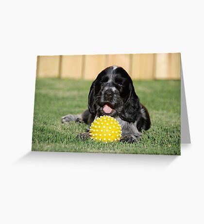 winnie and her ball Greeting Card