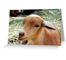 Too Kewl For Skool Greeting Card