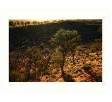 Desert Oaks Art Print