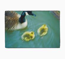 Geese & Gosling Kids Tee