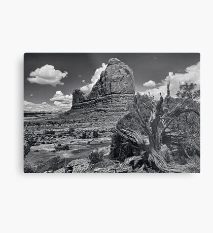 Organ Rock Metal Print