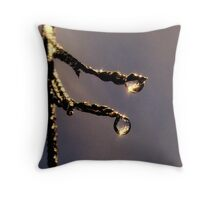 Sun Drenched h2o Throw Pillow