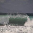 """Shut Your Mouth"", Werrong Beach, Australia 2014 by muz2142"
