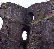 Growing Old (Abergavenny Castle) by Nala