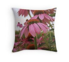 Layers of Pink Throw Pillow