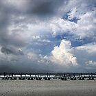 Beach Skies by Patricia Montgomery