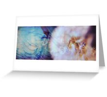 Dandelion Fossil Greeting Card