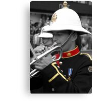 Band of color Canvas Print