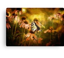 The Very Young At Heart Canvas Print