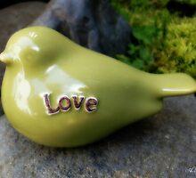 Love Bird by ADostert