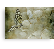 A Lighter Touch Canvas Print