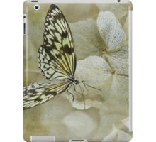 A Lighter Touch iPad Case/Skin