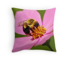 Nectar hunting Throw Pillow