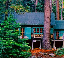 Fallen Leaf Lake Cabin..  by Nancy Stafford