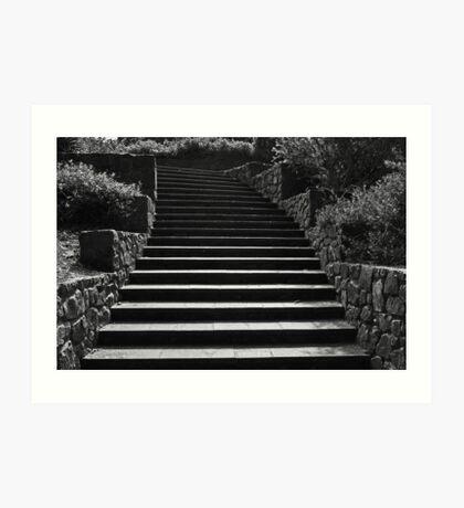 Kings Park Stairs  Art Print