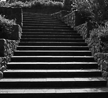 Kings Park Stairs  by EOS20