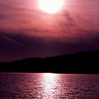 #479    Purple Sunset by MyInnereyeMike