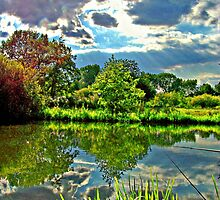 Swillington Fishing Pond, Leeds by lisachloe