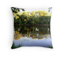 River of reflection Throw Pillow