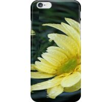 Yellow Daisy in a Bubble  iPhone Case/Skin