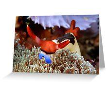 Komodo King Greeting Card
