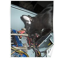 Lil Bear Helps Fix Computer Poster