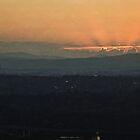 Sunrise at the National Arboretum in Canberra/ACT/Australia (1) by Wolf Sverak