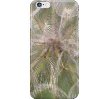 Giant Dandelion close up iPhone Case/Skin