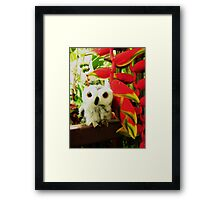 Red Hot Heliconias Framed Print