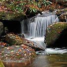 Living Water by Terri~Lynn Bealle