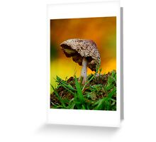 Morning Mushroom... Greeting Card