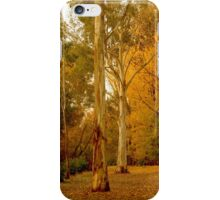 Bright in Autumn iPhone Case/Skin