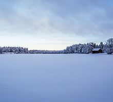 As snow covers the land by Mark Williams