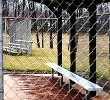 empty dugout by ASmith