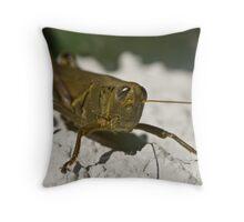 wall hopper Throw Pillow