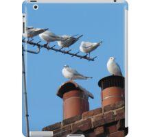 Urban Roost iPad Case/Skin