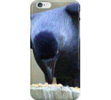 Jackdaw............. iPhone Case/Skin