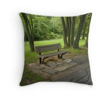 Nostalgic 2 Throw Pillow