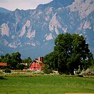 Barns of Boulder2 by Pamela Hubbard