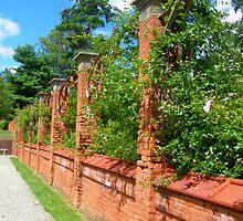 Italian Garden at Vanderbilt Estate by Melzo318