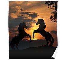 Sunset Showdown Poster