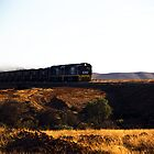 The Leigh Creek Coal Train by Dean Gale