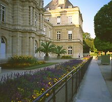 In the Luxembourg Gardens, Paris, August Evening by Priscilla Turner
