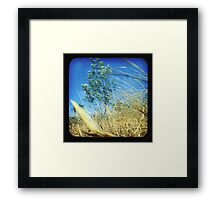 When the Wind Blows-Version ii Framed Print