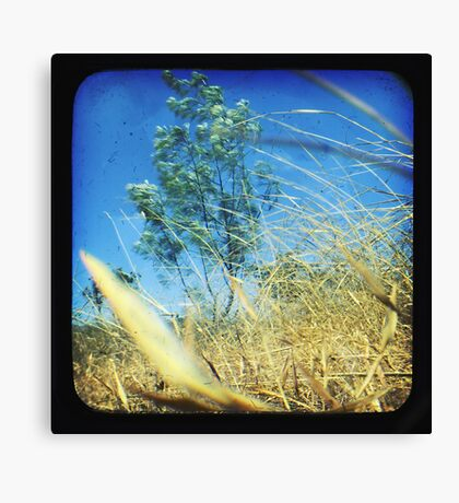 When the Wind Blows-Version ii Canvas Print