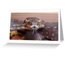 Snake Tongue Greeting Card