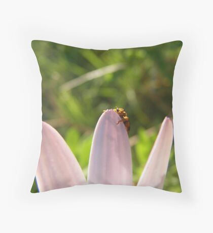 Oh Hai! Throw Pillow
