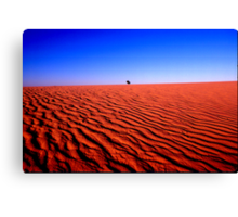 DUNE COUNTRY Canvas Print