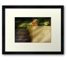 The urn and some stairs Framed Print
